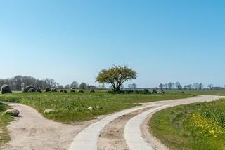 Megalithanlage Großsteingrab Nobbin, Sprockhoff-Nr. 466)