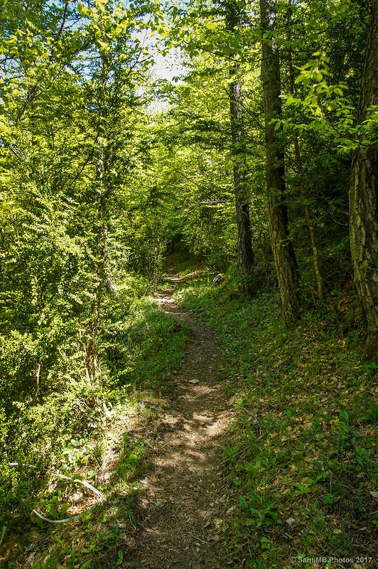 Camino cerca de Cabanes