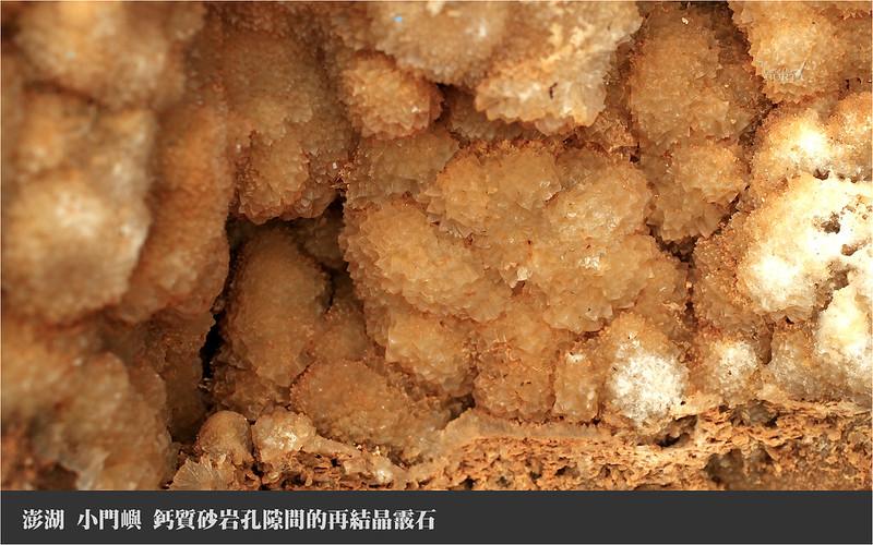 006小門嶼_鈣質砂岩孔隙間的再結晶霰石