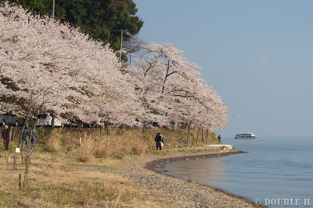 Kaidu-Osaki at 2017 Spring (6)