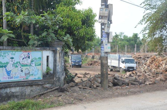 Bãi củi nằm sát bên hông trường mầm non - Ảnh: Thanh Ba