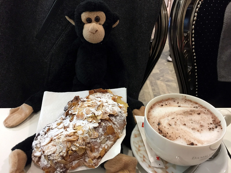 Monkey enjoying an almond croissant
