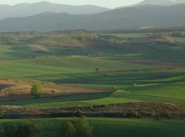 Campos de la Rioja