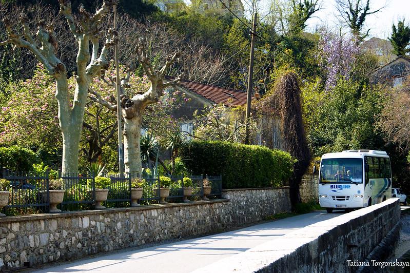 Автобус в Прчане