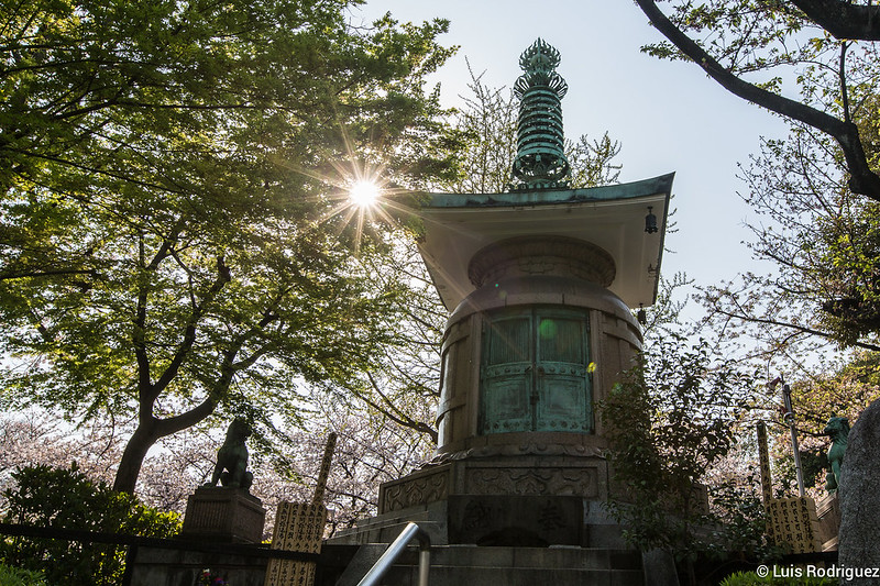 Zojiji-Shiba-Park-24