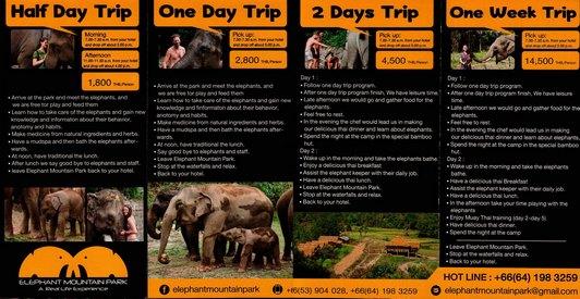 Elephant Mountain Park Chiang Mai Thailand Brochure 02