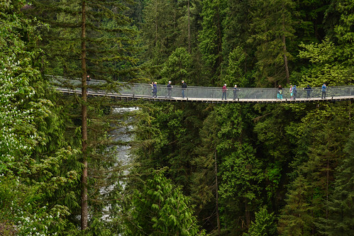 Capilano Suspension Bridge Park 13 | by C.M. Keiner