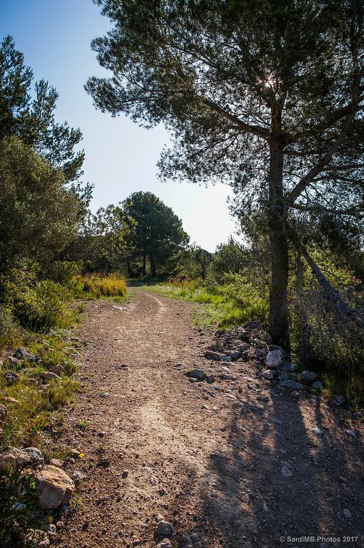 Entre Cal Borges y Cal Pla