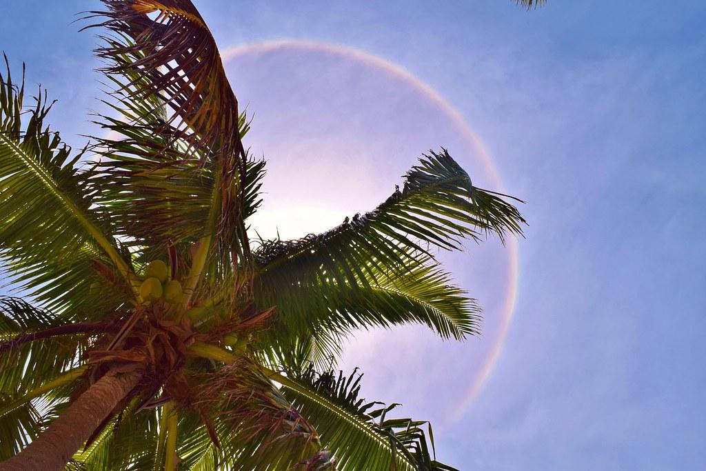 A halo on Half Moon Caye