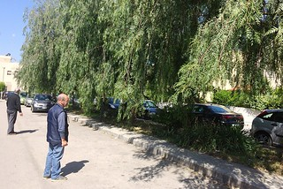 Noicattaro. Problemi via Turati front