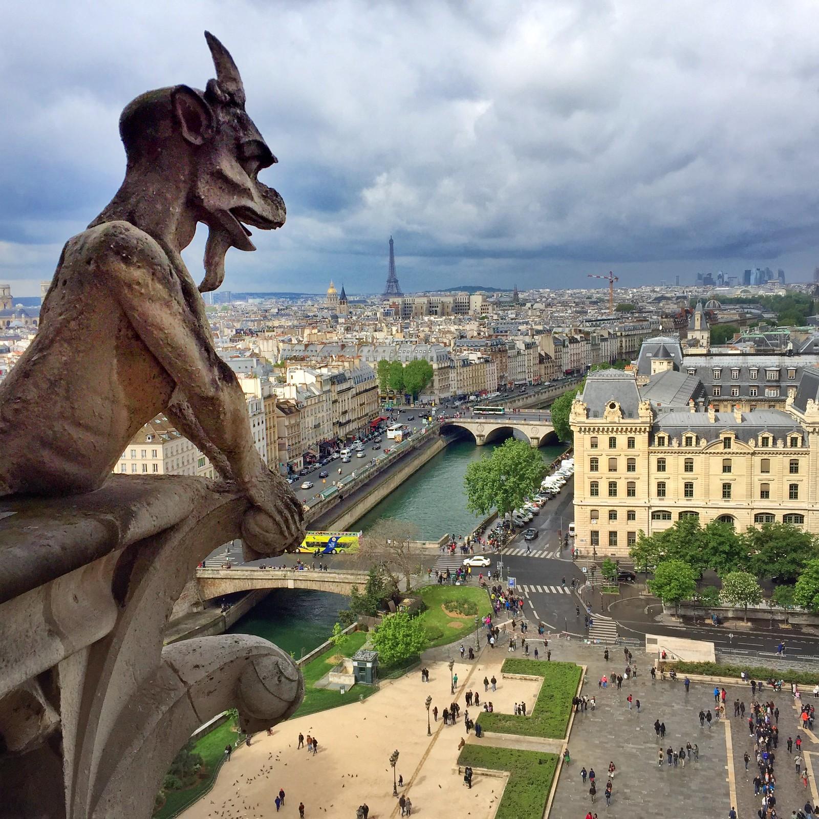 Viajar a Paris con Perro viajar a paris con perro - 34215580300 07930bcf87 h - Viajar a Paris con perro