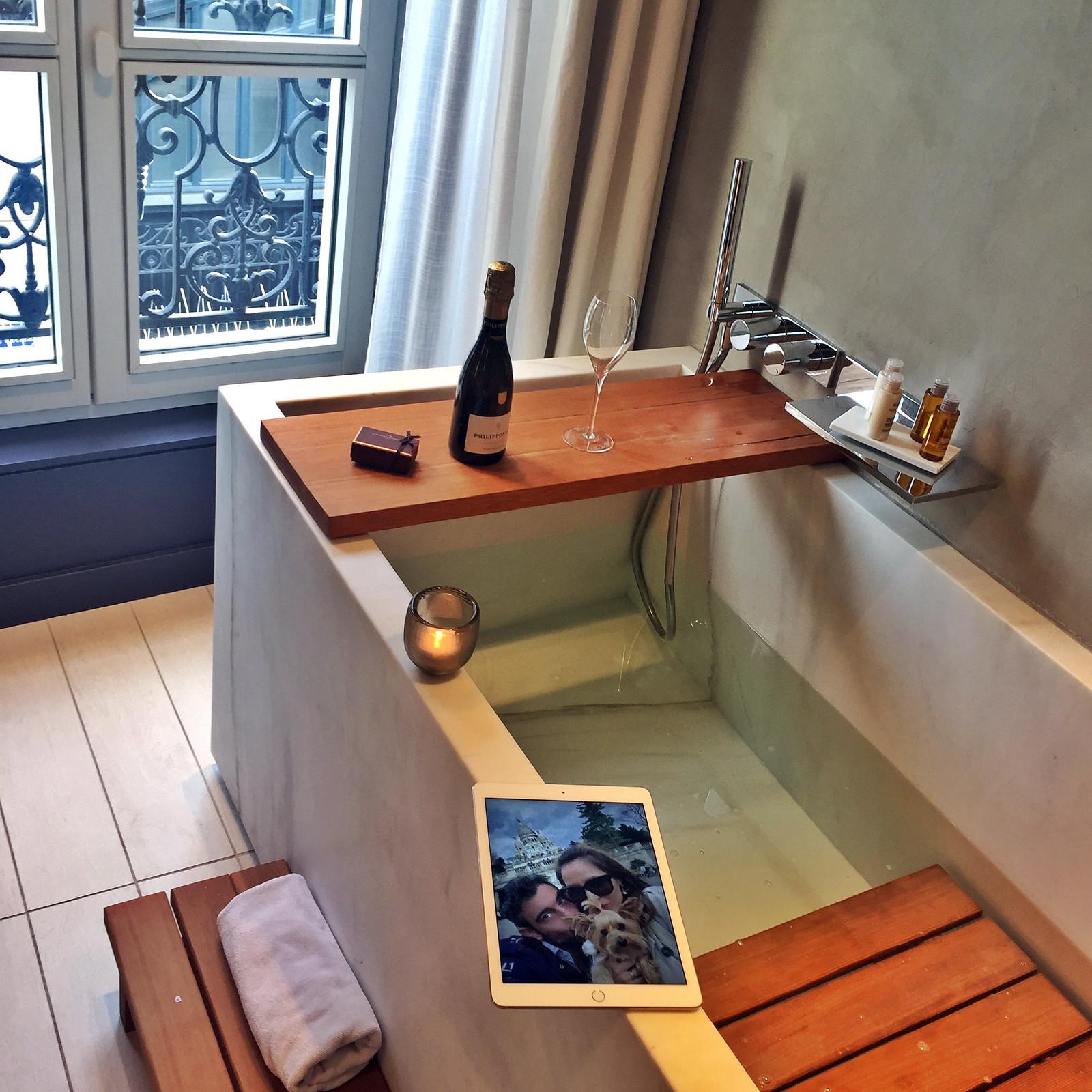 Viajar a Paris con Perro - Hotel de Nell Paris viajar a paris con perro - 34215581060 7b140ab74c h - Viajar a Paris con perro