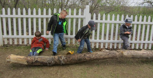 working as a team to move the log