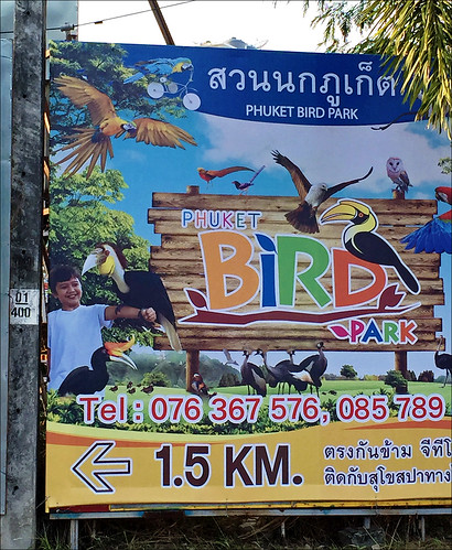 Bird Park Phuket Sign Featuring My Son