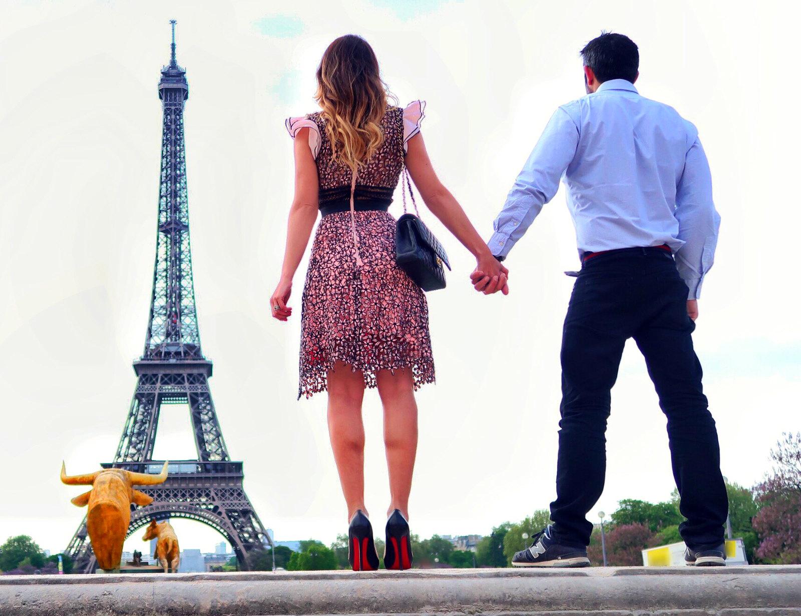 Viajar a Paris con Perro viajar a paris con perro - 34559997096 14806963b0 h - Viajar a Paris con perro