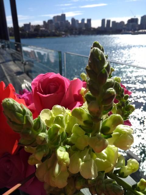 moto-g5-flowers (4)
