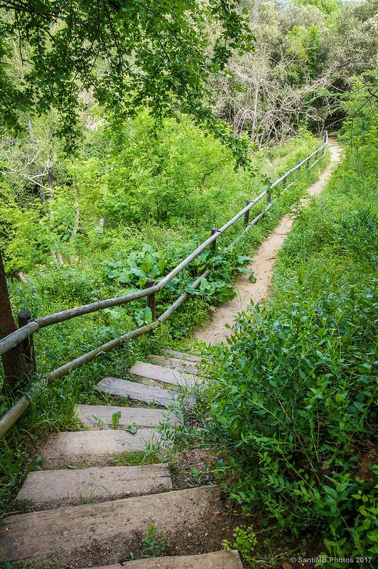Camino de Can Poeti