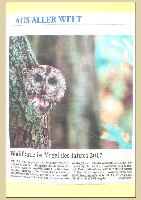 Ein kleiner Spaziergang im Käfertaler Wald in Mannheim im Mai 2017: Wildschweingehege und Vogelpark. Der Waldkauz ist Vogel des Jahres 2017 ... Fotos und Collagen: Brigitte Stolle