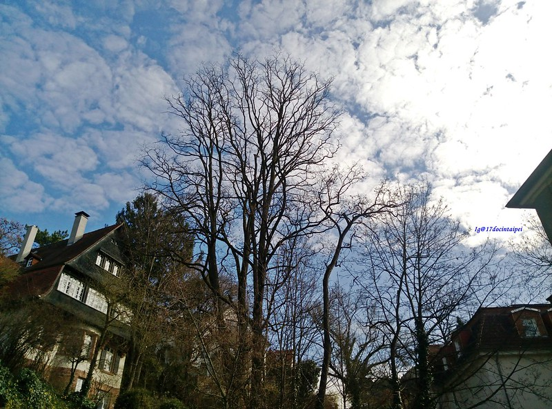 travel-heidelberg-germany-17docintaipei (4)