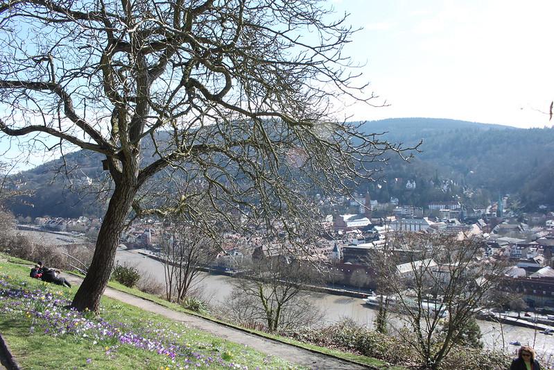 travel-heidelberg-germany-17docintaipei (26)