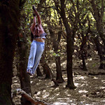 Tree Acrobatics - take 12