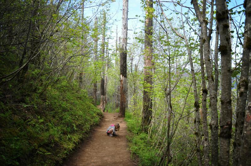 Angel's Rest Trail @ Mt. Hope Chronicles