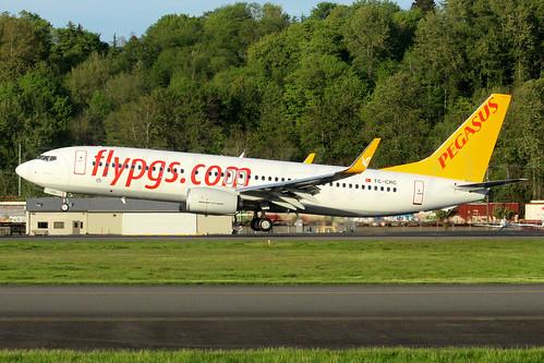 Boeing 737-82R(WL) Pegasus TC-CRC LN6390