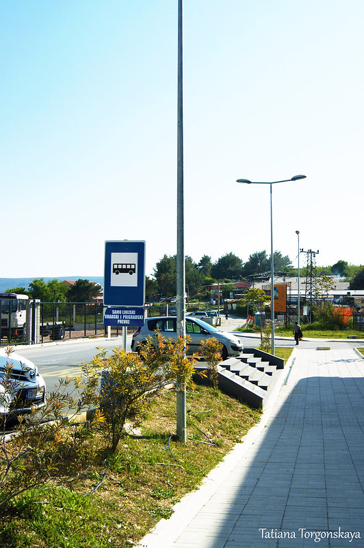 "Остановка для автобусов ""Blue line"" возле автостанции Тивата"