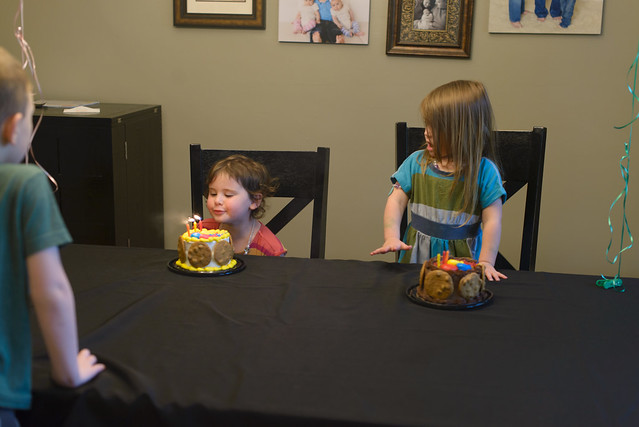 girls 3rd birthday-24