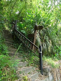 旁邊小路的階梯