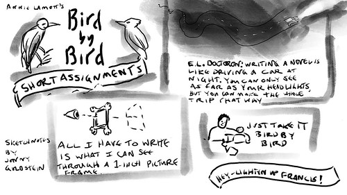 shortassignments-birdbybird--sketchnotes