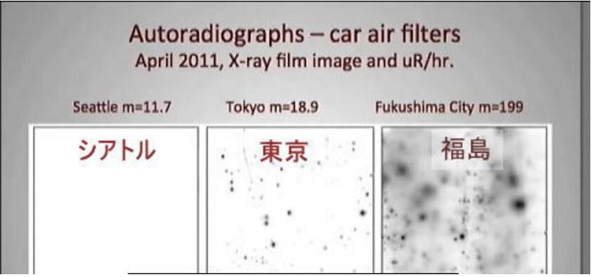 2011年攝影師加賀古雅道利用放射線攝影法所拍攝的,西雅圖、東京與福島市三地之濾網裡輻射塵比較,日本民眾由此感受輻射塵分佈差異甚大,面對輻射污染,幾個點的監測,難以了解全貌。