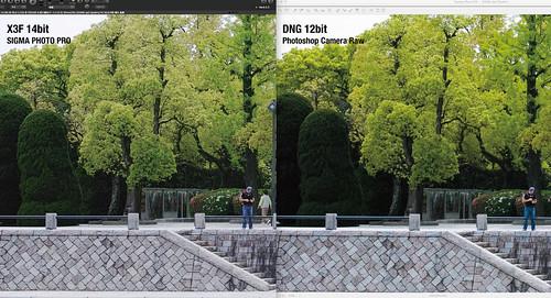 X3F vs DNG(Photoshop)