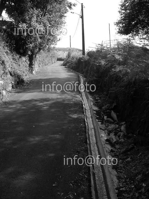 Camiño da Arigua
