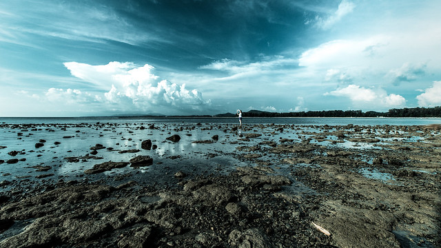Nai Yang Beach Phuket Thailand