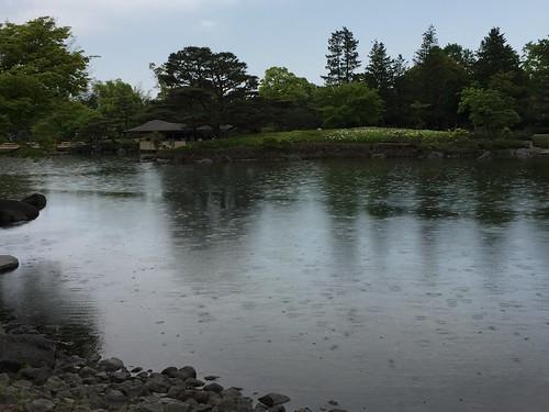 昭和記念公園 昭和の日 日本庭園