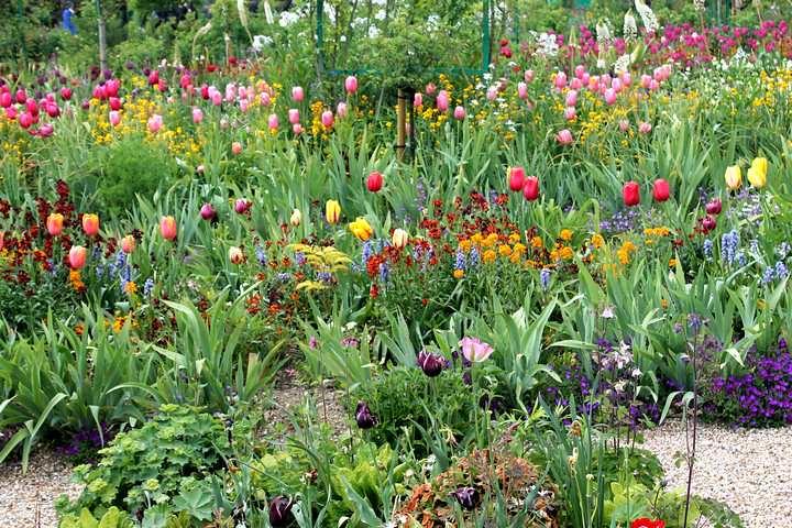 Jardinea Monet en Giverny