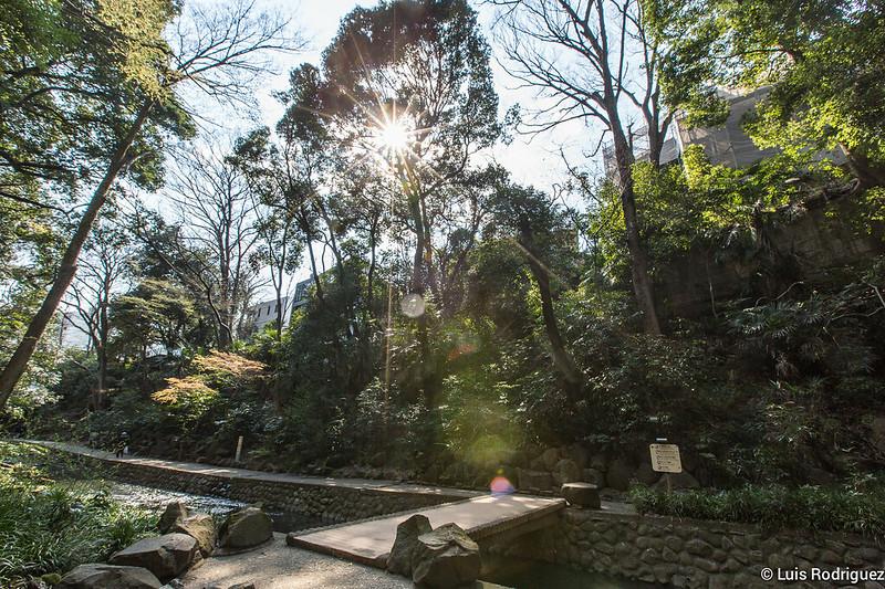 Valle-Todoroki-Tokio-21