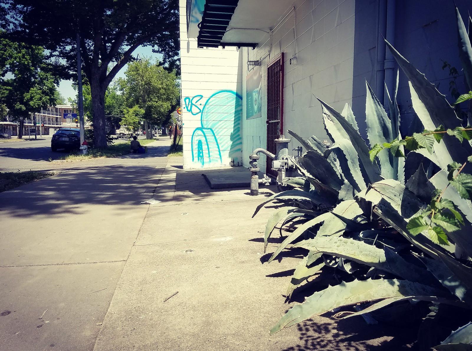 Igloo & Cacti   by rickele