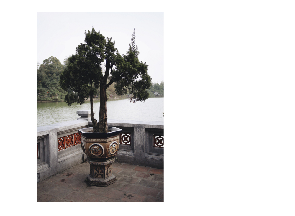 Hanoi_fin, Hanoi, Vietnam, Photo and Travel Diary by The Curly Head, Photography by Amelie Niederbuchner,