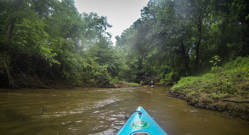 Long Cane Creek with Lowcountry Unfiltered-44