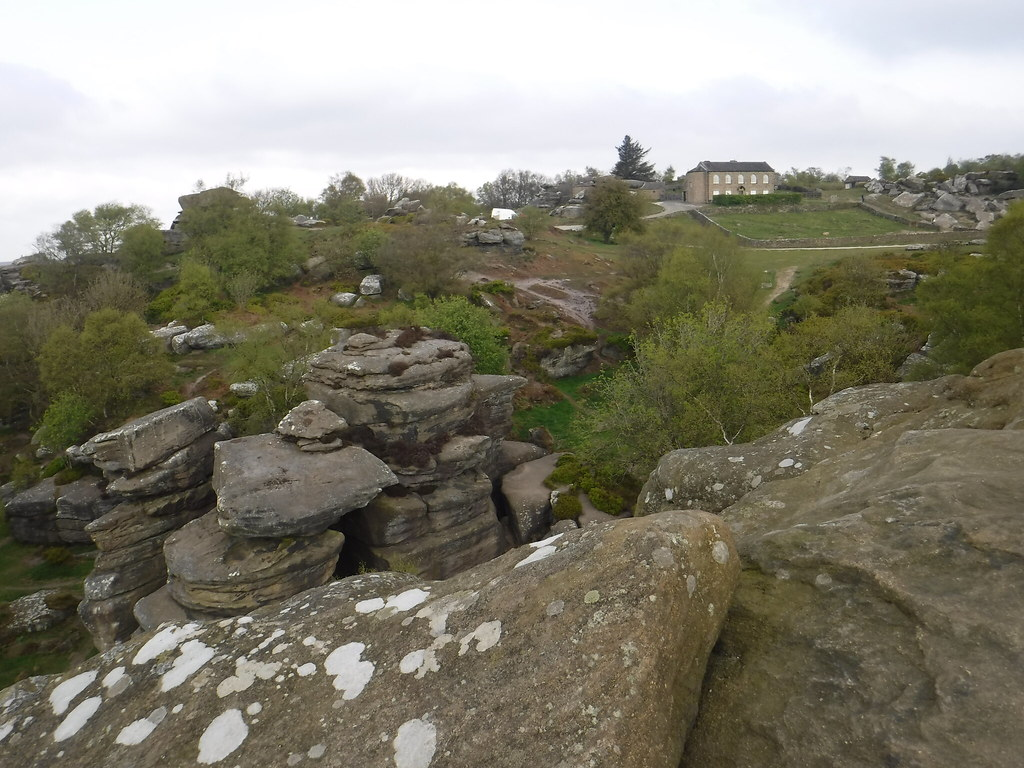 Brimham Rocks 20