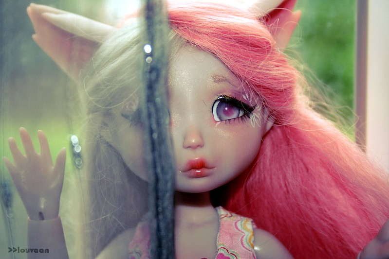 [Nympheas doll Squirrel ] Milly  34207579220_690e1a22d4_c
