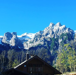 Siegi Tours Summer Holiday. Best Deals in Austria. www.siegitours.com @siegi_tours #summer_austria #holidy_alps #siegi_tours_summer #summer_holiday #adventure_package #salzburg #summer_vacation #shunshine #alps #family #hiking #sports #holiday #travel #ho | by siegi.tours