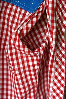 Simplicity 1538 in Gingham | by patternandbranch
