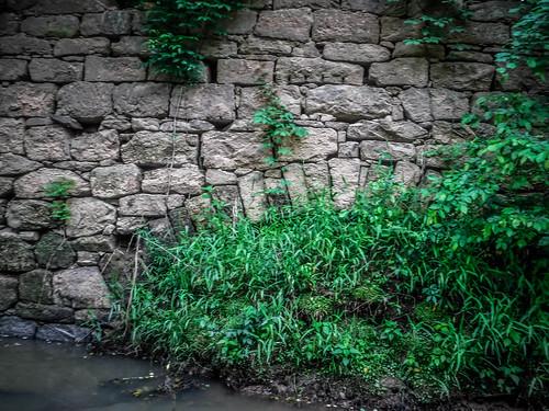 Bradley Mill on Long Cane Creek-004