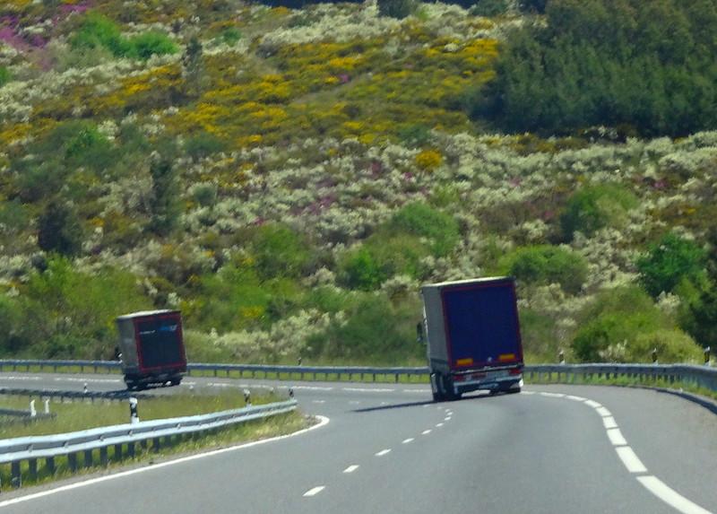 Camiones de camino II