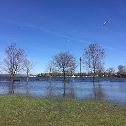 Flooding at Britannia Beach, Ottawa