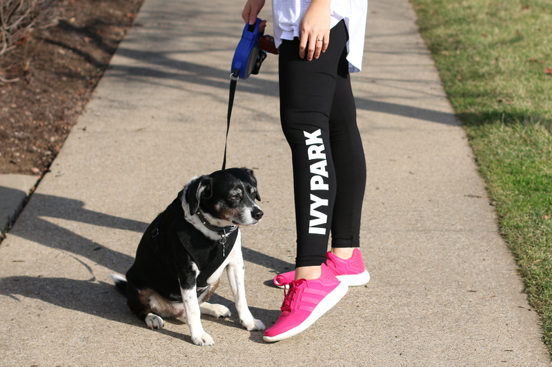 ivy-park-leggings-dog-2