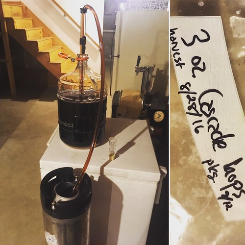 "Tonight I racked ""Let the Wookiee Win"" (Mk. II) -- my black rye IPA fermented with saison yeast -- into the keg. I've decided to try to keg hop it with 3 oz. whole cone Cascade from my friend's summer 2016 harvest. #homebrewing"